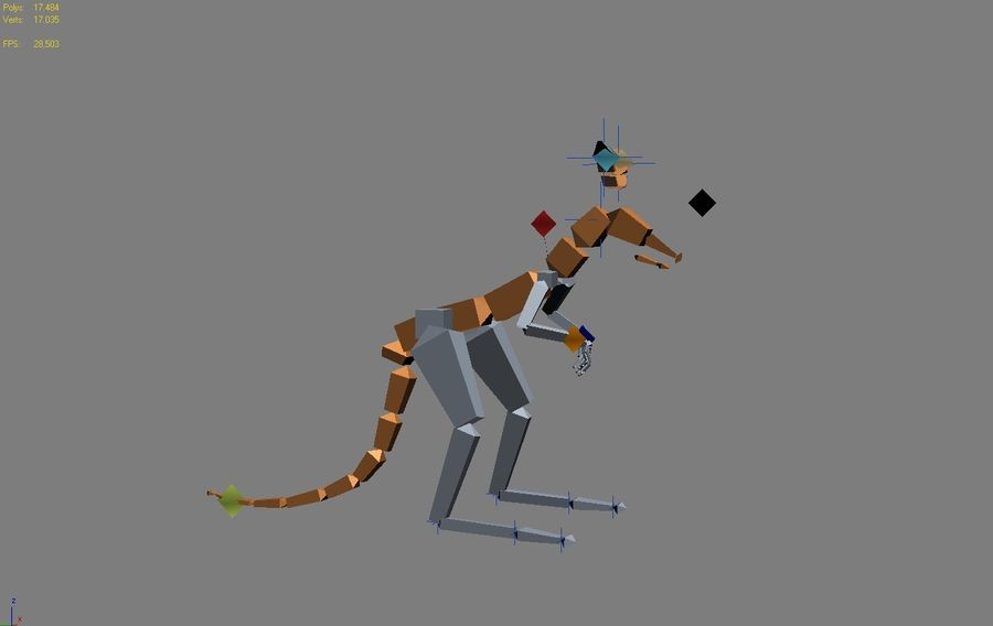 Canguro 3D Modello Rigged Animato royalty-free 3d model - Preview no. 5