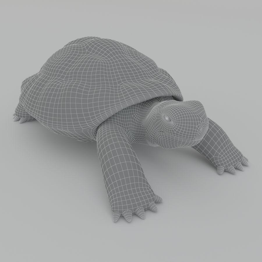 черепаха royalty-free 3d model - Preview no. 7