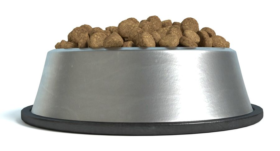 Bowl of Dog Food royalty-free 3d model - Preview no. 4
