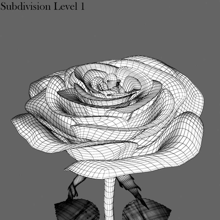Rose Red royalty-free 3d model - Preview no. 16