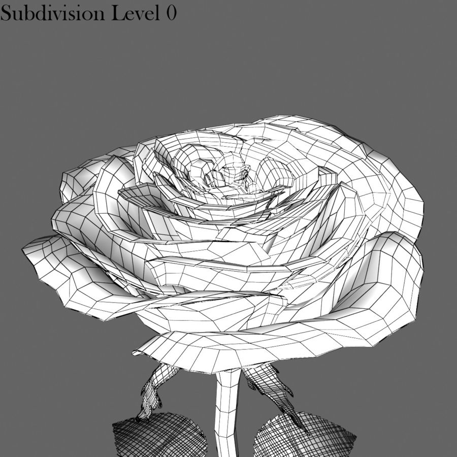 Rose Red royalty-free 3d model - Preview no. 15