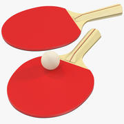 Ping Pong Ball and Paddle 3d model