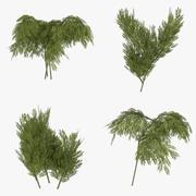 Gotowy do gry zestaw krzewów trzy 3d model
