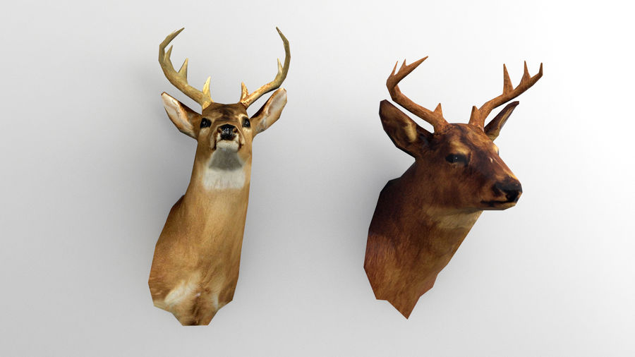 Taxidermie des cerfs (low poly) royalty-free 3d model - Preview no. 2