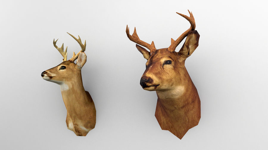 Taxidermie des cerfs (low poly) royalty-free 3d model - Preview no. 1
