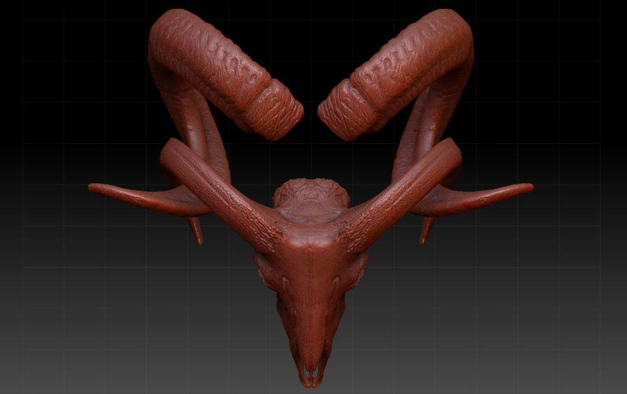 Ram Skull royalty-free 3d model - Preview no. 4