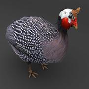 Guinea Fowl Bird dark 3d model