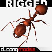 Огненный муравей 3d model