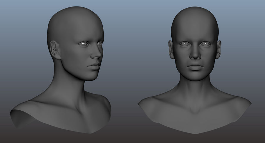 Cabeça fêmea - malha base royalty-free 3d model - Preview no. 22