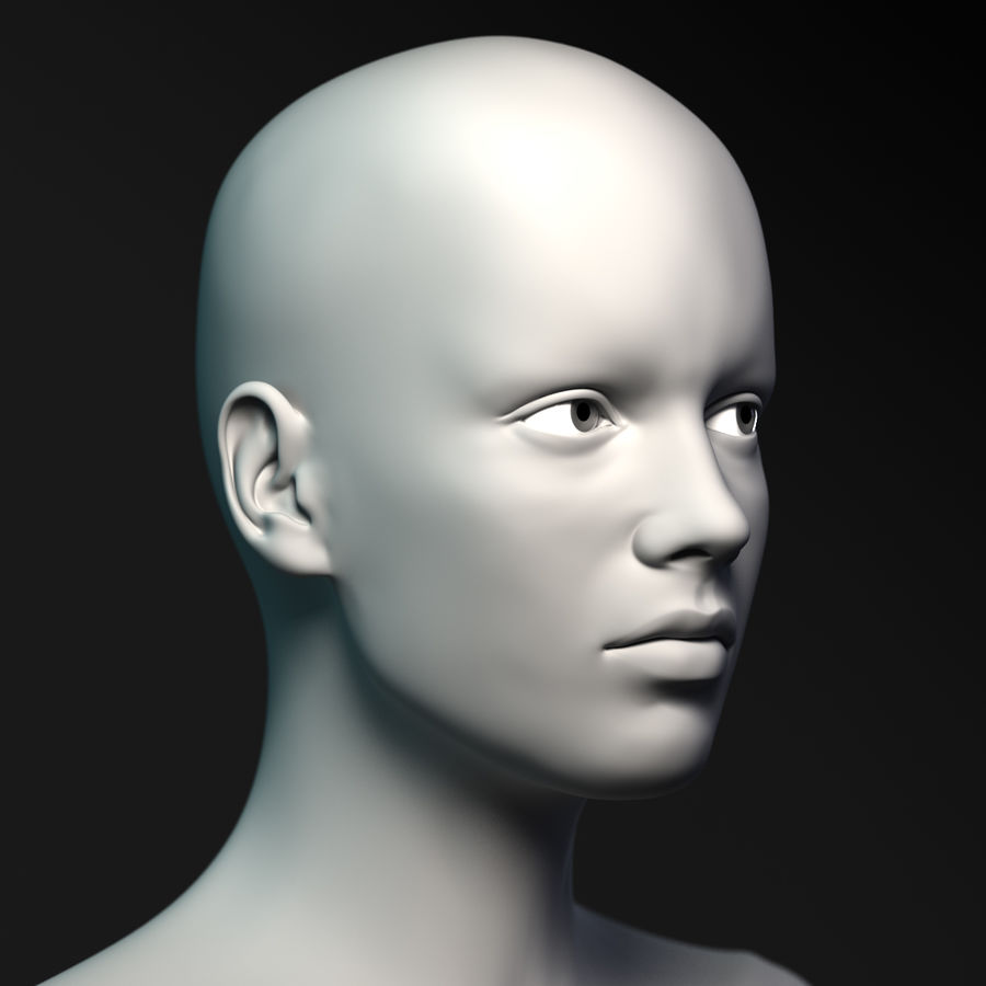 Cabeça fêmea - malha base royalty-free 3d model - Preview no. 6