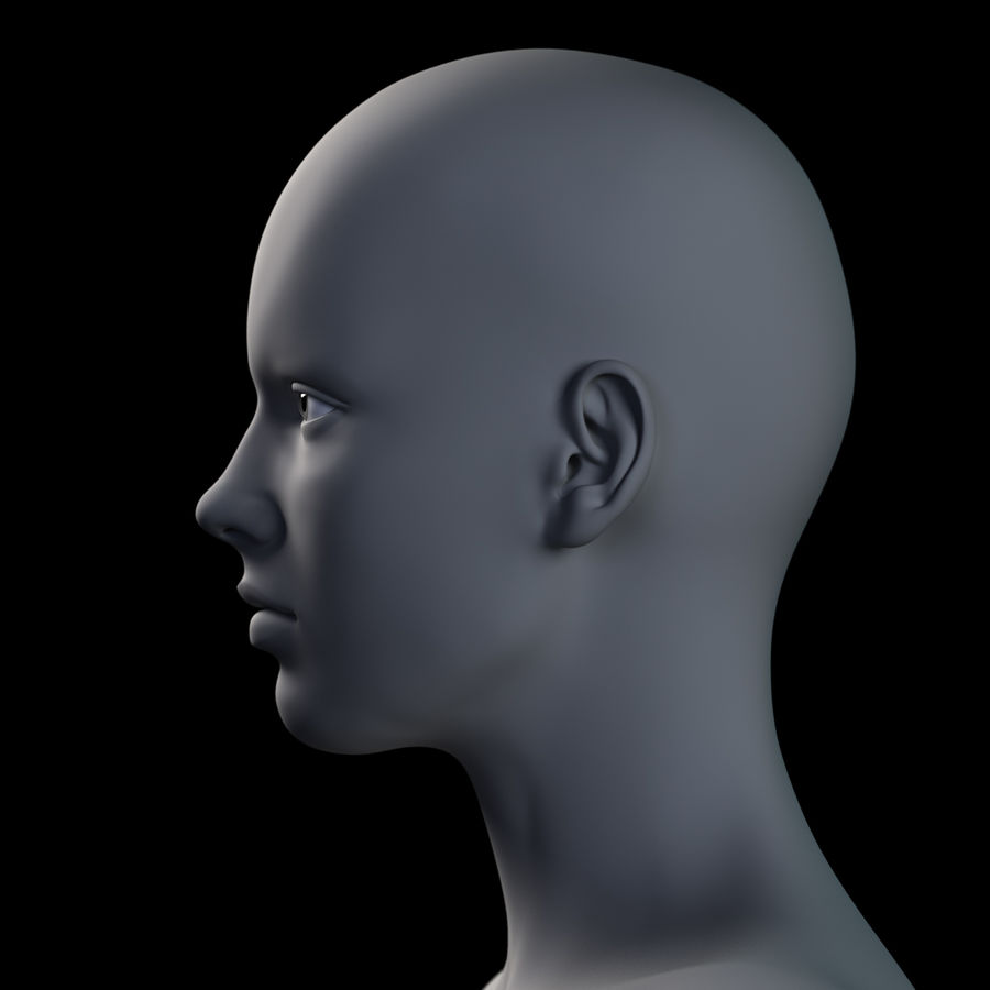 Cabeça fêmea - malha base royalty-free 3d model - Preview no. 10