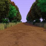Forest Path 3 3d model