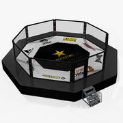 Fighting Arena 3d model