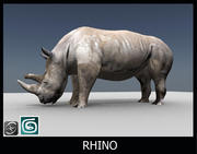 犀牛 3d model