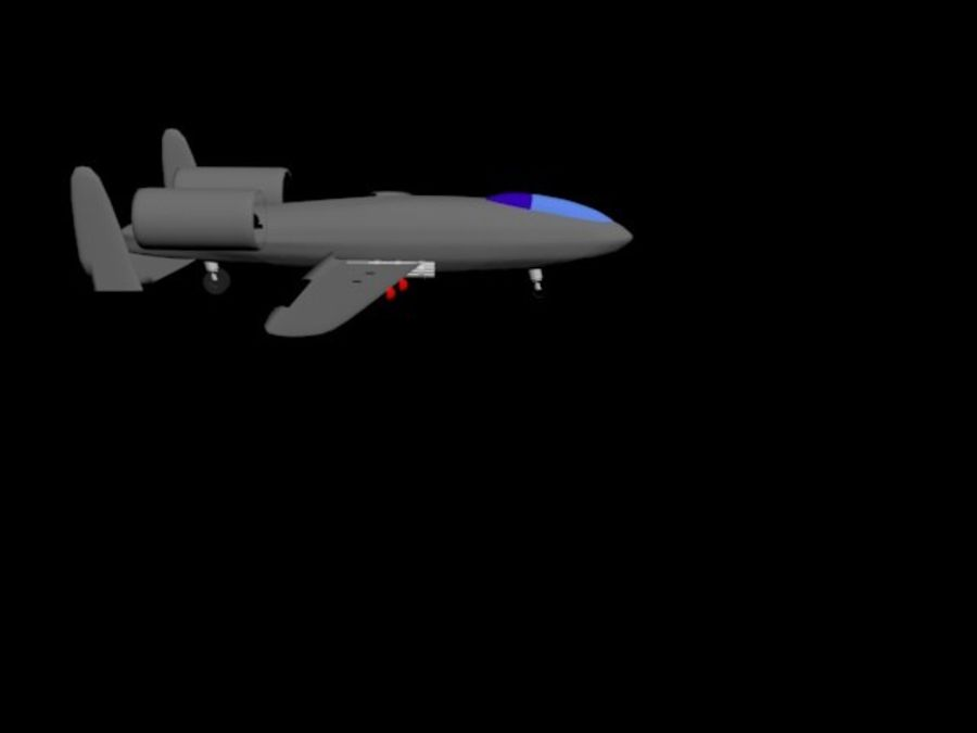 Phacochère A10 royalty-free 3d model - Preview no. 5