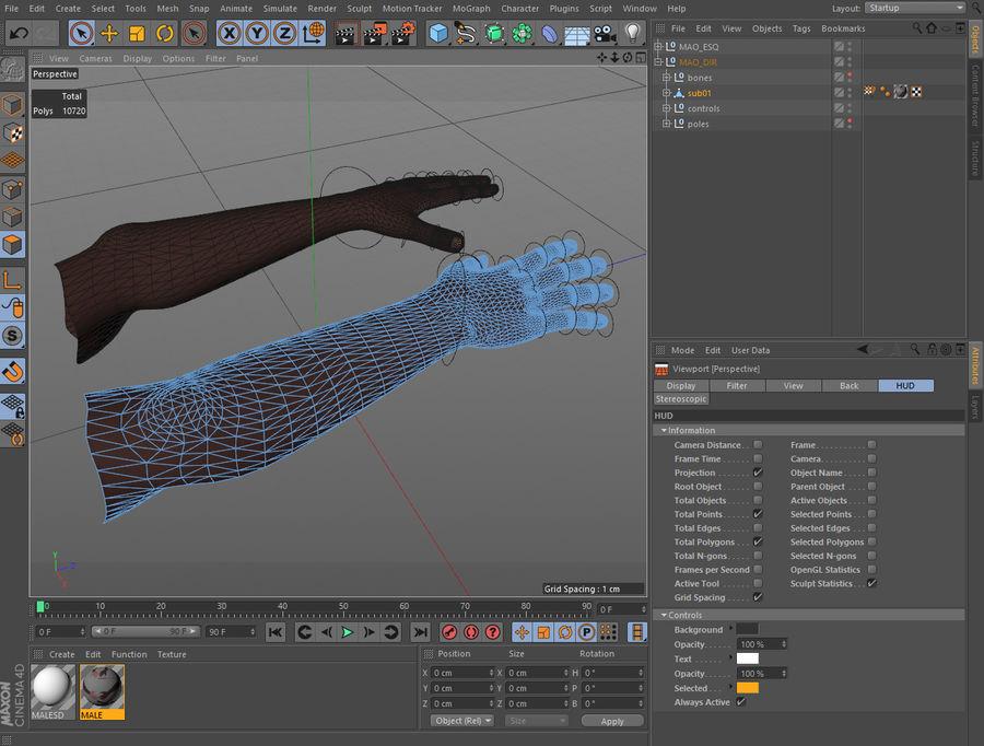 Mains entièrement gréées royalty-free 3d model - Preview no. 3