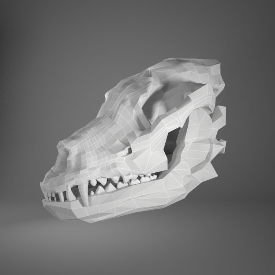 Dog skull royalty-free 3d model - Preview no. 3