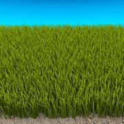 Högt gräs 3d model