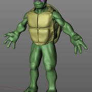 Ninja Man żółwia 3d model