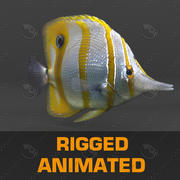 魚2 3d model