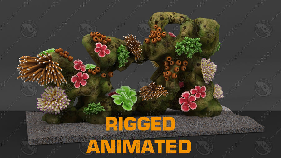 - koraalrif - opgetuigd en geanimeerd royalty-free 3d model - Preview no. 1