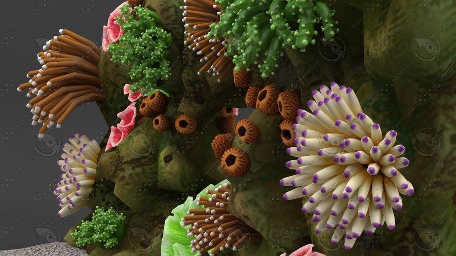 - koraalrif - opgetuigd en geanimeerd royalty-free 3d model - Preview no. 7