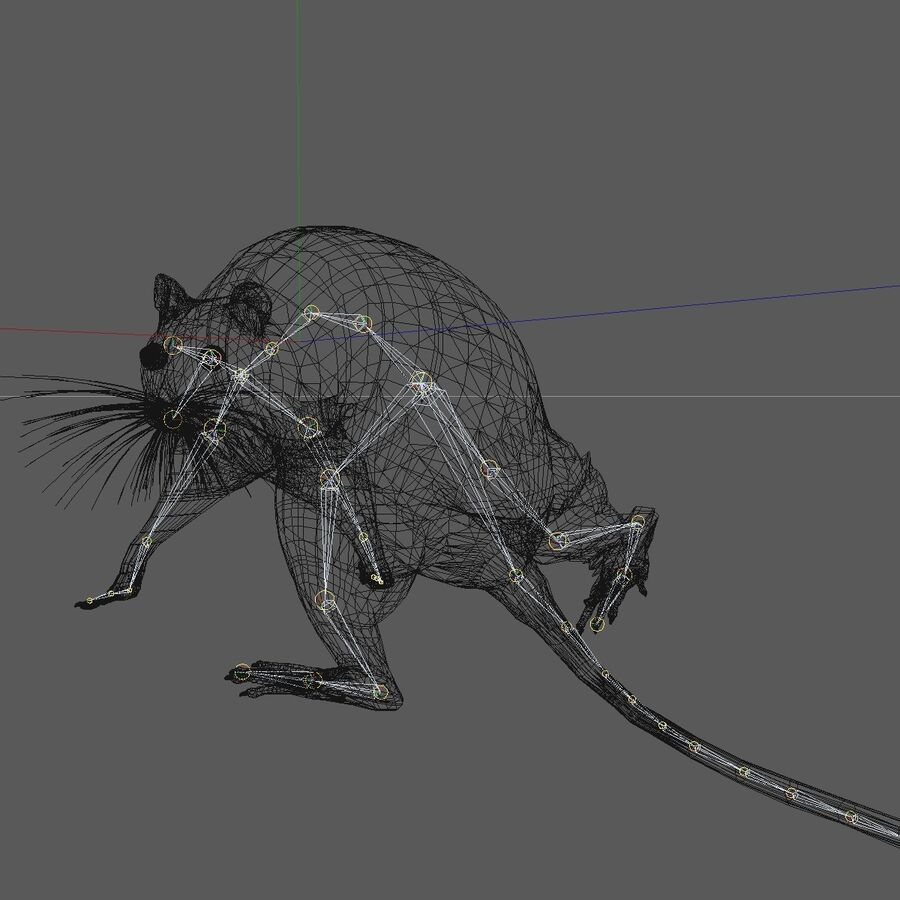 Animated Walking Black Mouse royalty-free 3d model - Preview no. 17