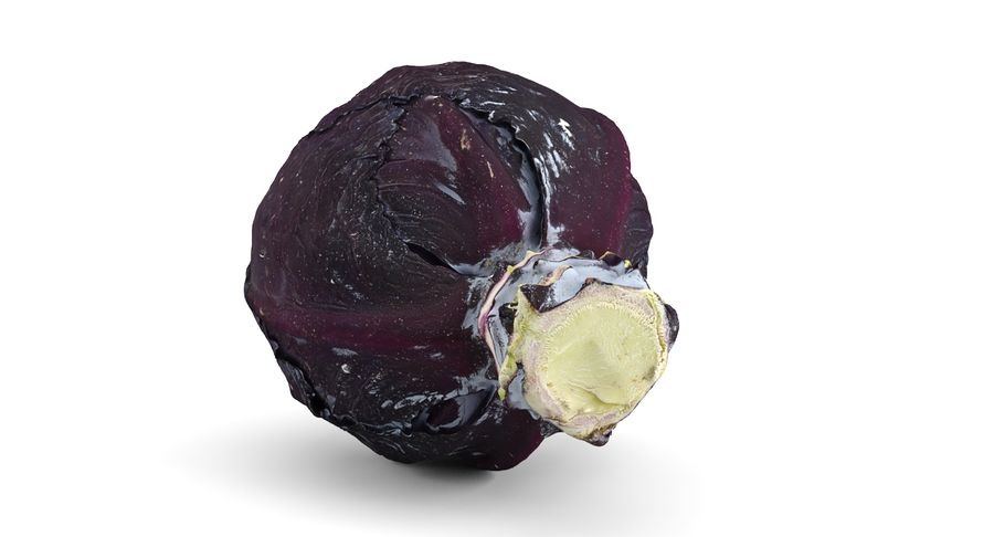 Red Cabbage royalty-free 3d model - Preview no. 4