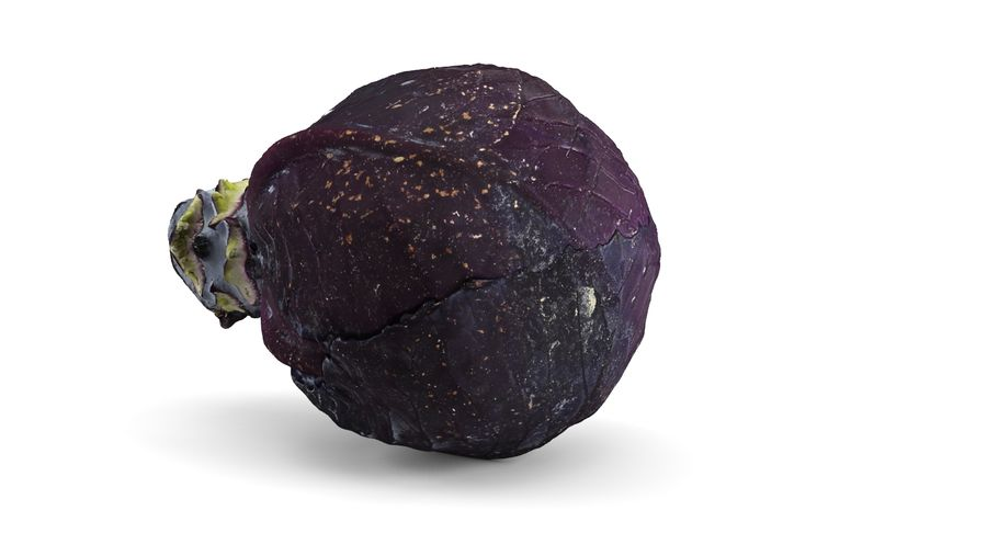 Red Cabbage royalty-free 3d model - Preview no. 5
