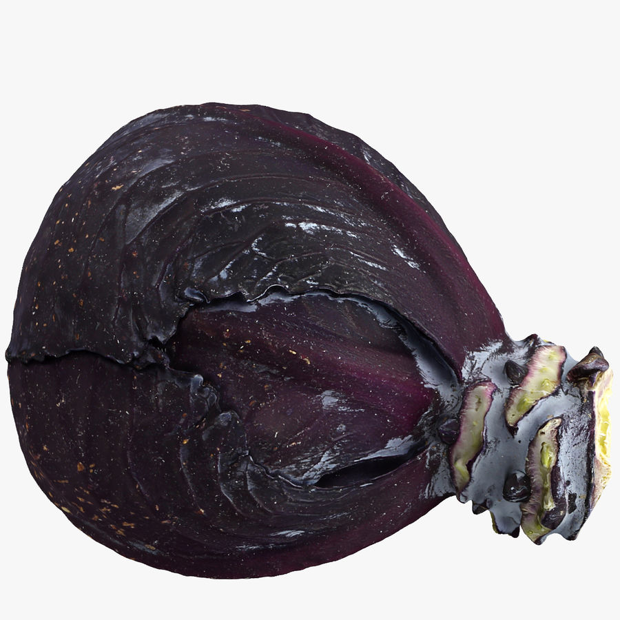 Red Cabbage royalty-free 3d model - Preview no. 1