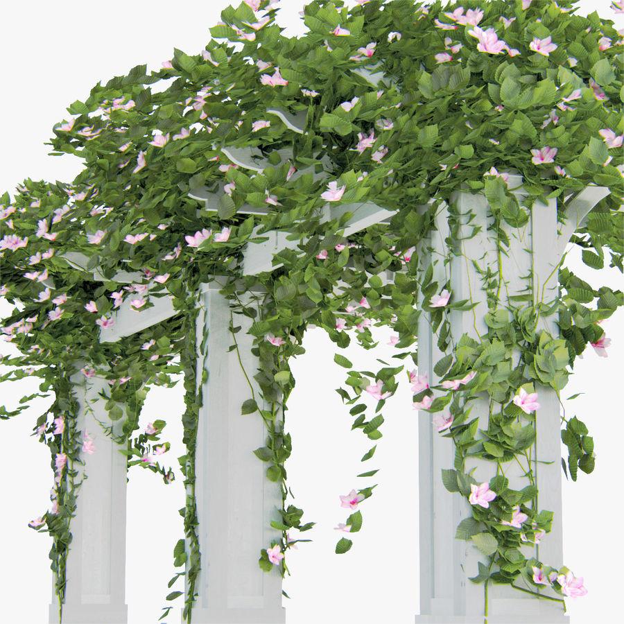 Ustaw róże pnące Bougainvillea 4 Pergole Z Kwiatami Bluszcz royalty-free 3d model - Preview no. 4