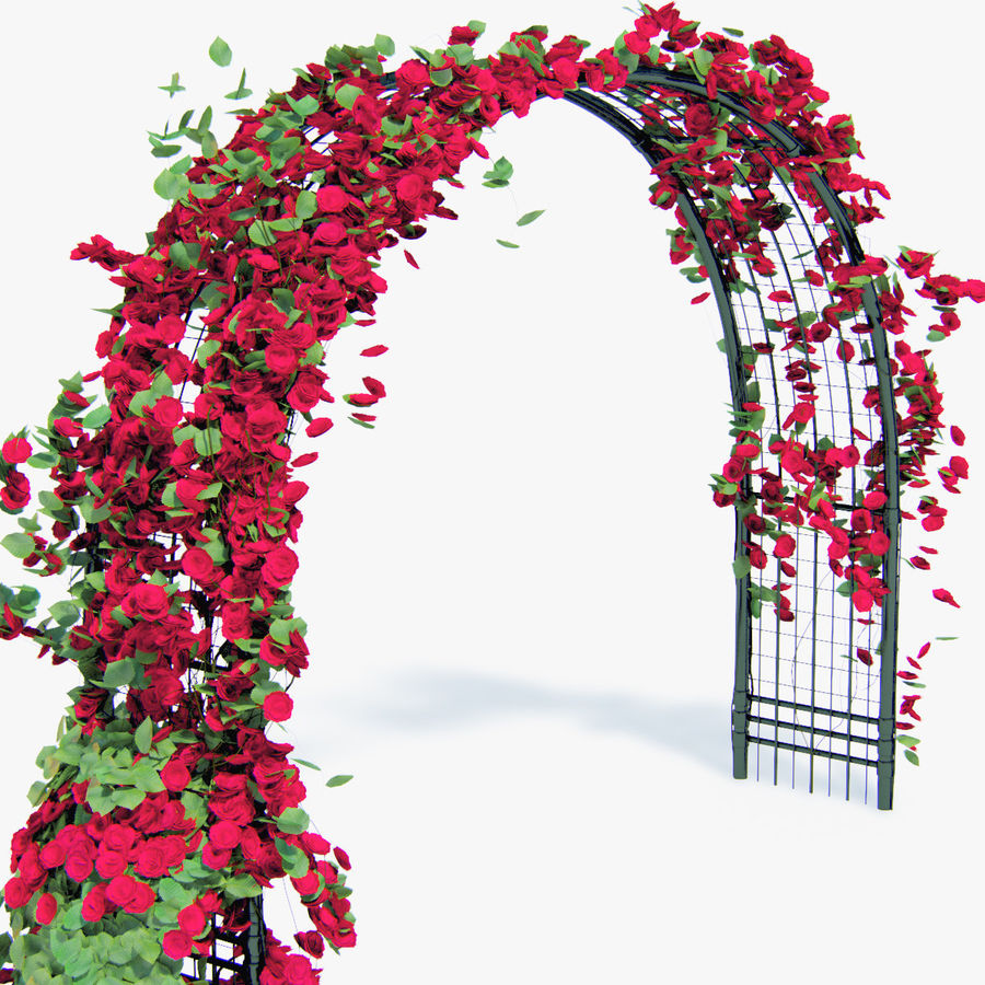 Set climbing roses bougainvillea Of 4 Pergolas With Flowers Ivy royalty-free 3d model - Preview no. 16
