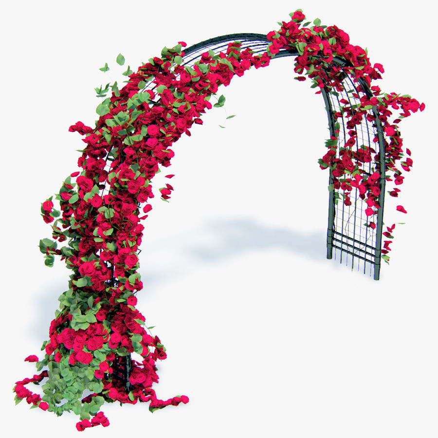 Set climbing roses bougainvillea Of 4 Pergolas With Flowers Ivy royalty-free 3d model - Preview no. 12