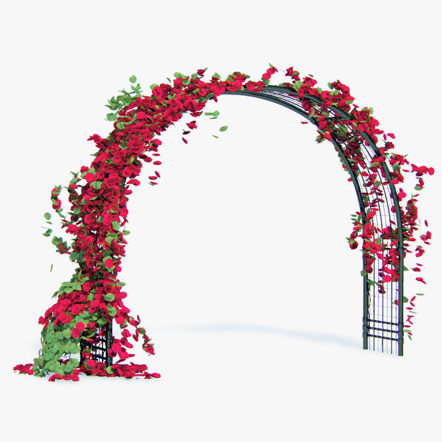 Set climbing roses bougainvillea Of 4 Pergolas With Flowers Ivy royalty-free 3d model - Preview no. 15