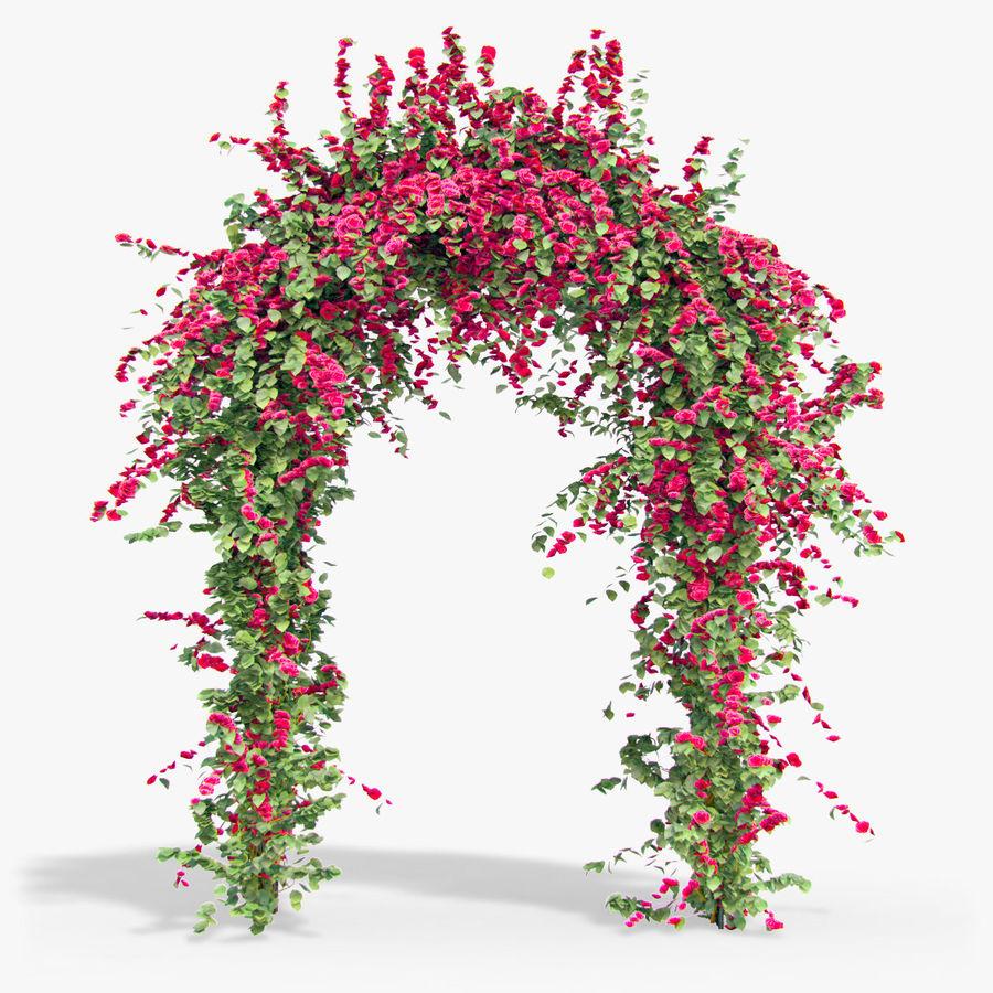 Ustaw róże pnące Bougainvillea 4 Pergole Z Kwiatami Bluszcz royalty-free 3d model - Preview no. 8