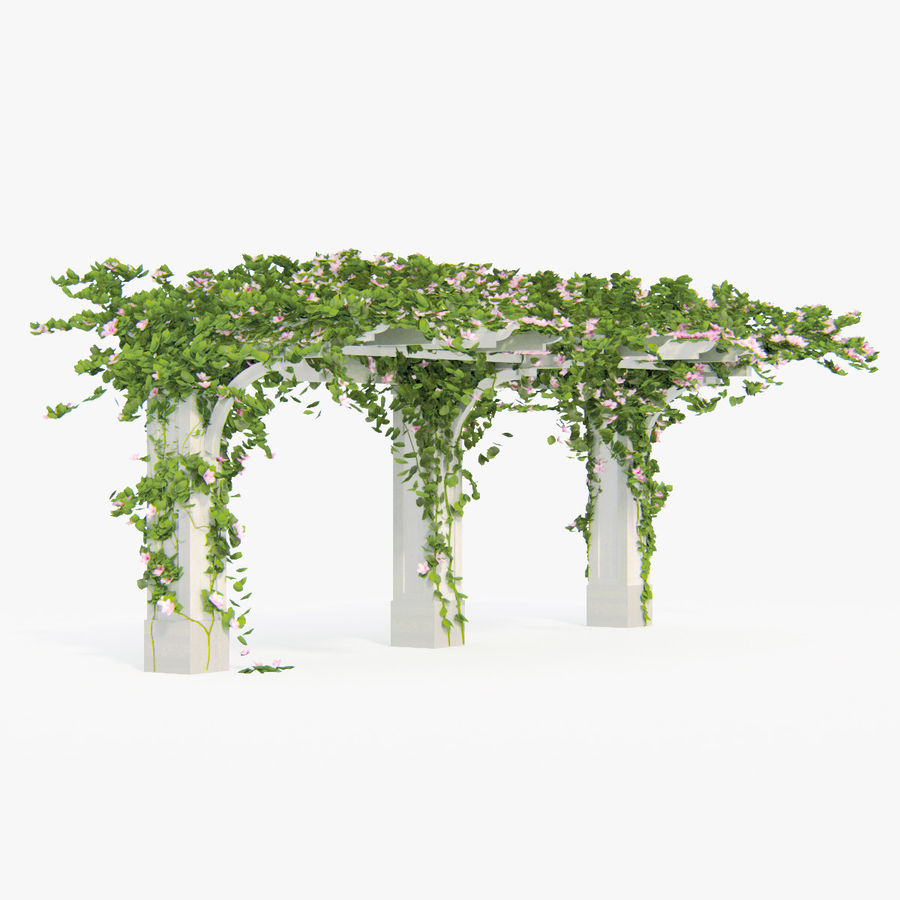 Set climbing roses bougainvillea Of 4 Pergolas With Flowers Ivy royalty-free 3d model - Preview no. 6