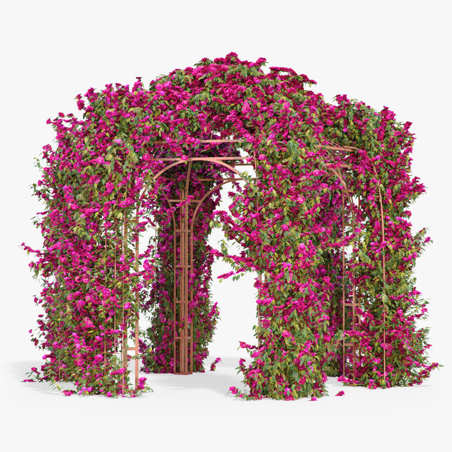 Set climbing roses bougainvillea Of 4 Pergolas With Flowers Ivy royalty-free 3d model - Preview no. 17