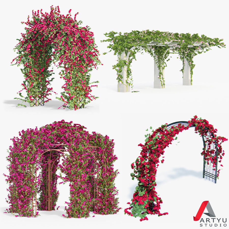 Set climbing roses bougainvillea Of 4 Pergolas With Flowers Ivy royalty-free 3d model - Preview no. 1