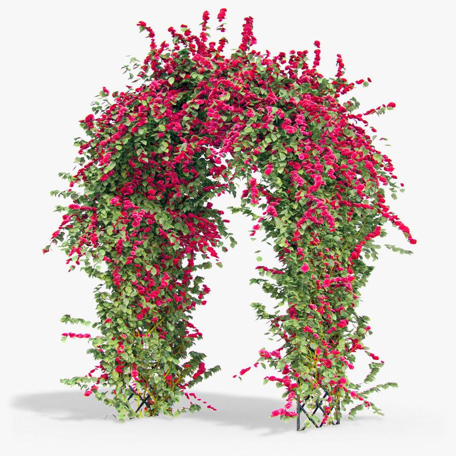 Ustaw róże pnące Bougainvillea 4 Pergole Z Kwiatami Bluszcz royalty-free 3d model - Preview no. 9