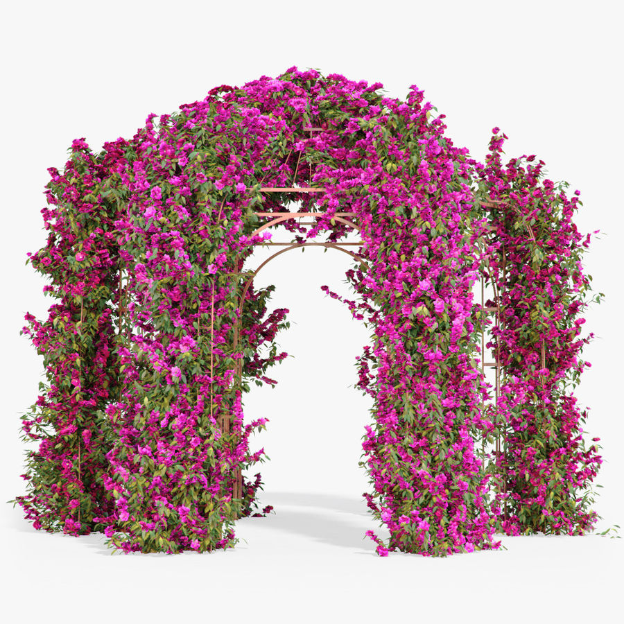 Set climbing roses bougainvillea Of 4 Pergolas With Flowers Ivy royalty-free 3d model - Preview no. 18