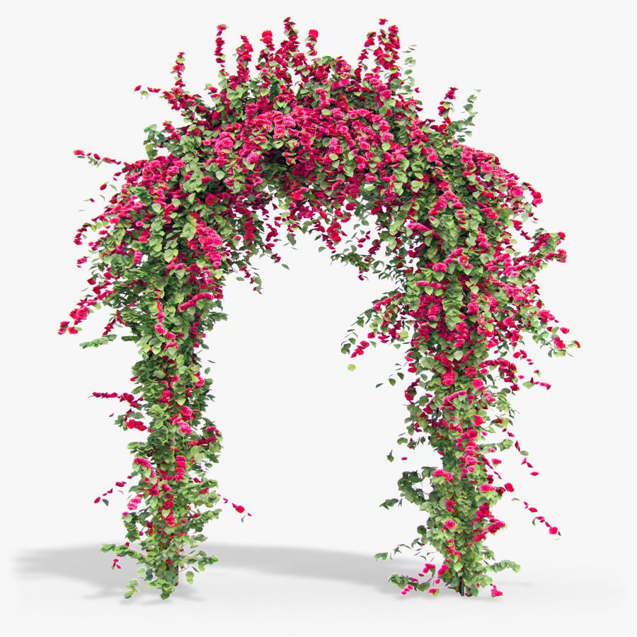 Set climbing roses bougainvillea Of 4 Pergolas With Flowers Ivy royalty-free 3d model - Preview no. 8