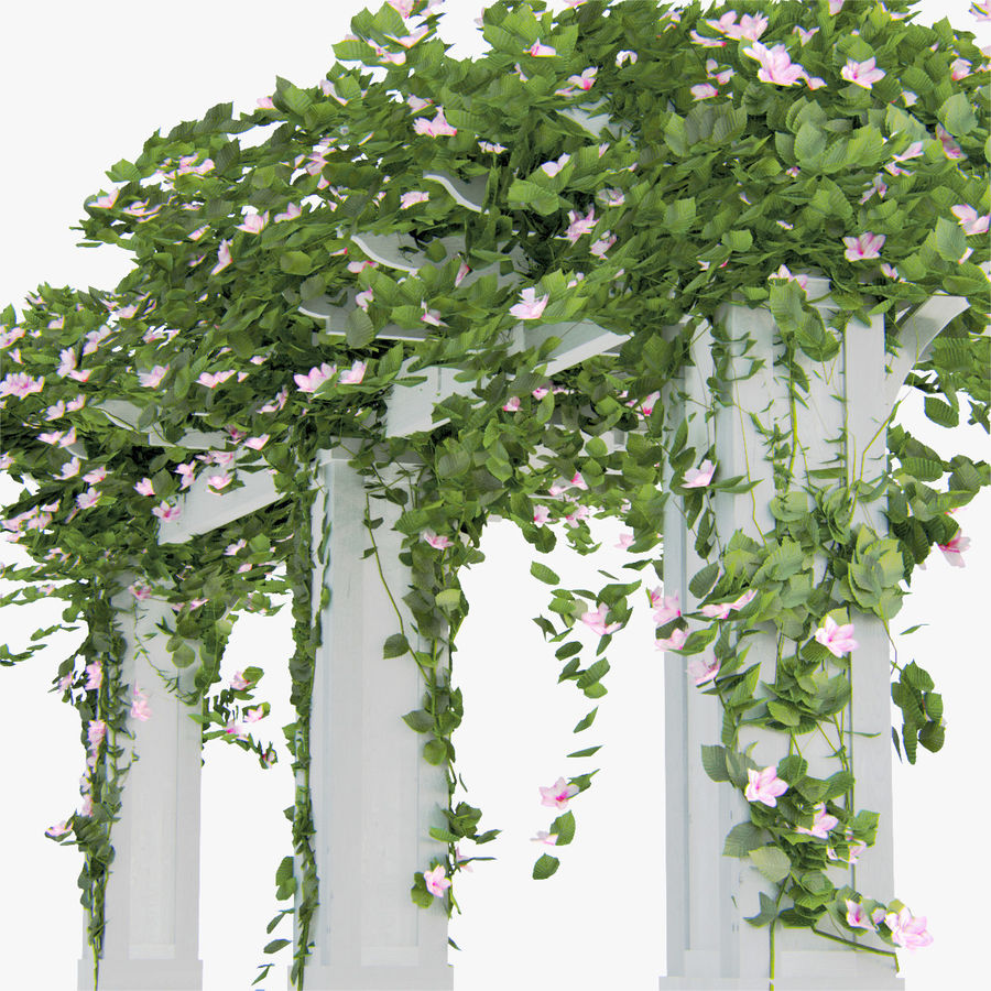 Set climbing roses bougainvillea Of 4 Pergolas With Flowers Ivy royalty-free 3d model - Preview no. 4