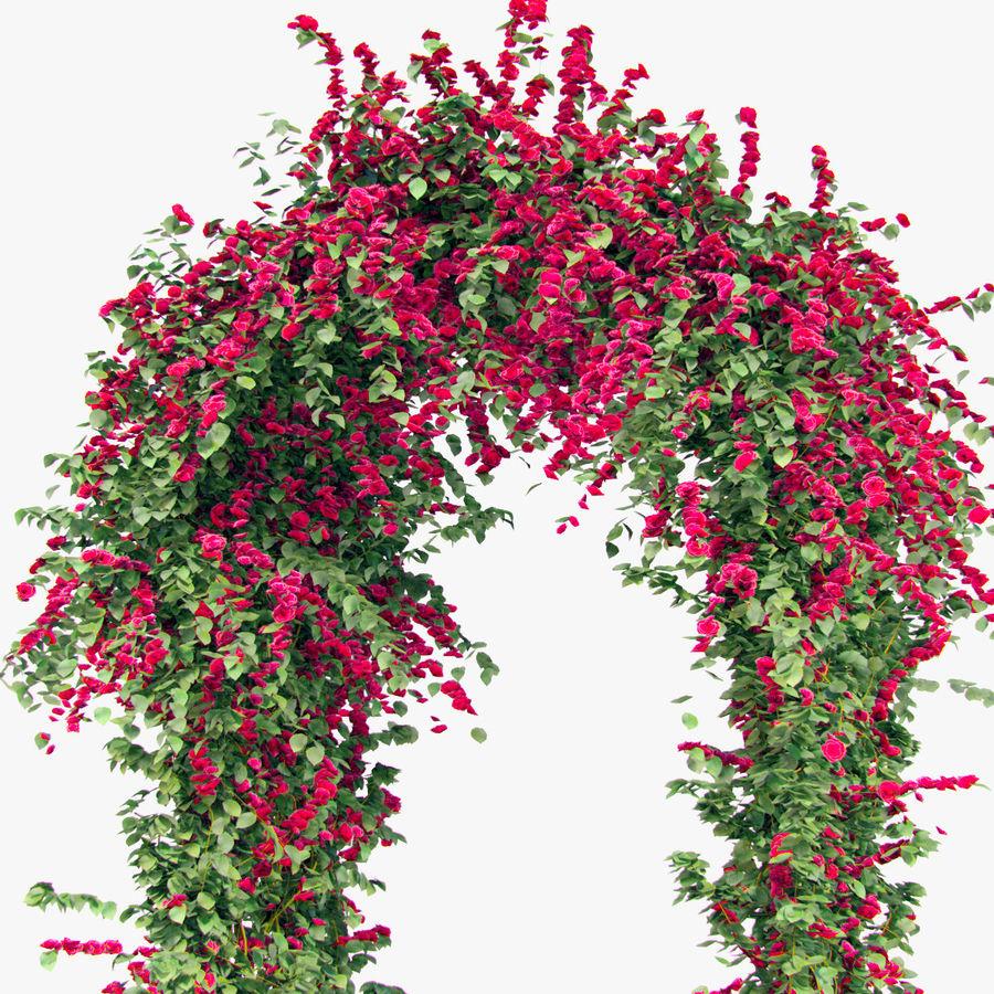 Ustaw róże pnące Bougainvillea 4 Pergole Z Kwiatami Bluszcz royalty-free 3d model - Preview no. 10