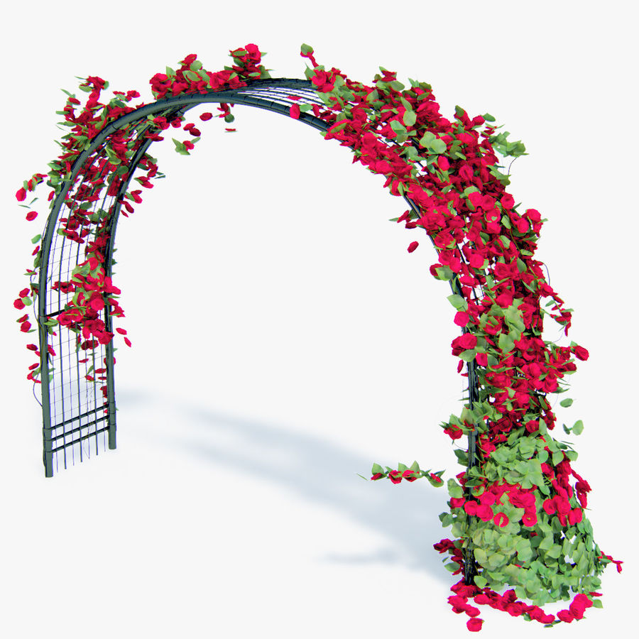 Set climbing roses bougainvillea Of 4 Pergolas With Flowers Ivy royalty-free 3d model - Preview no. 13