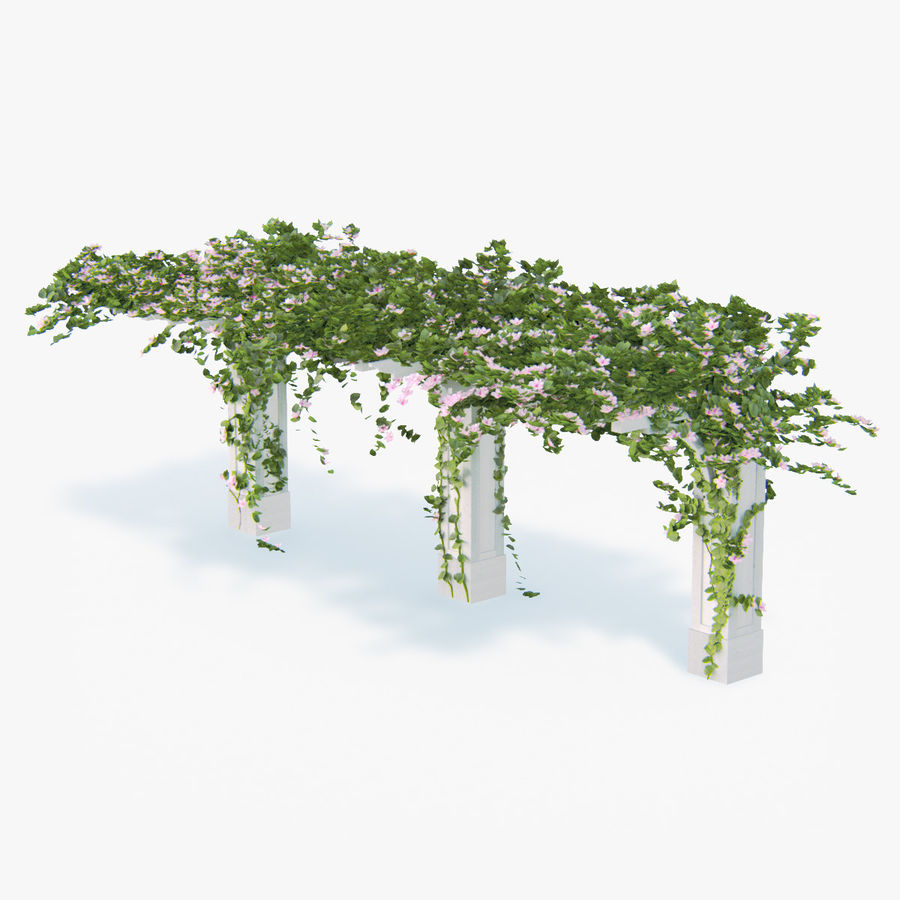 Set climbing roses bougainvillea Of 4 Pergolas With Flowers Ivy royalty-free 3d model - Preview no. 2