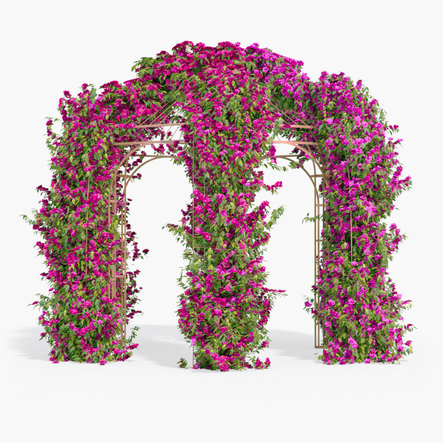 Set climbing roses bougainvillea Of 4 Pergolas With Flowers Ivy royalty-free 3d model - Preview no. 19