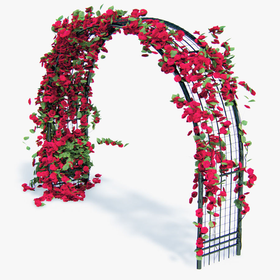 Set climbing roses bougainvillea Of 4 Pergolas With Flowers Ivy royalty-free 3d model - Preview no. 14