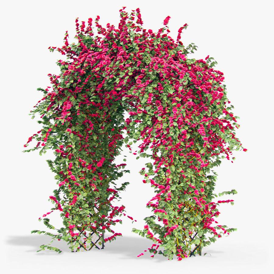 Ustaw róże pnące Bougainvillea 4 Pergole Z Kwiatami Bluszcz royalty-free 3d model - Preview no. 7
