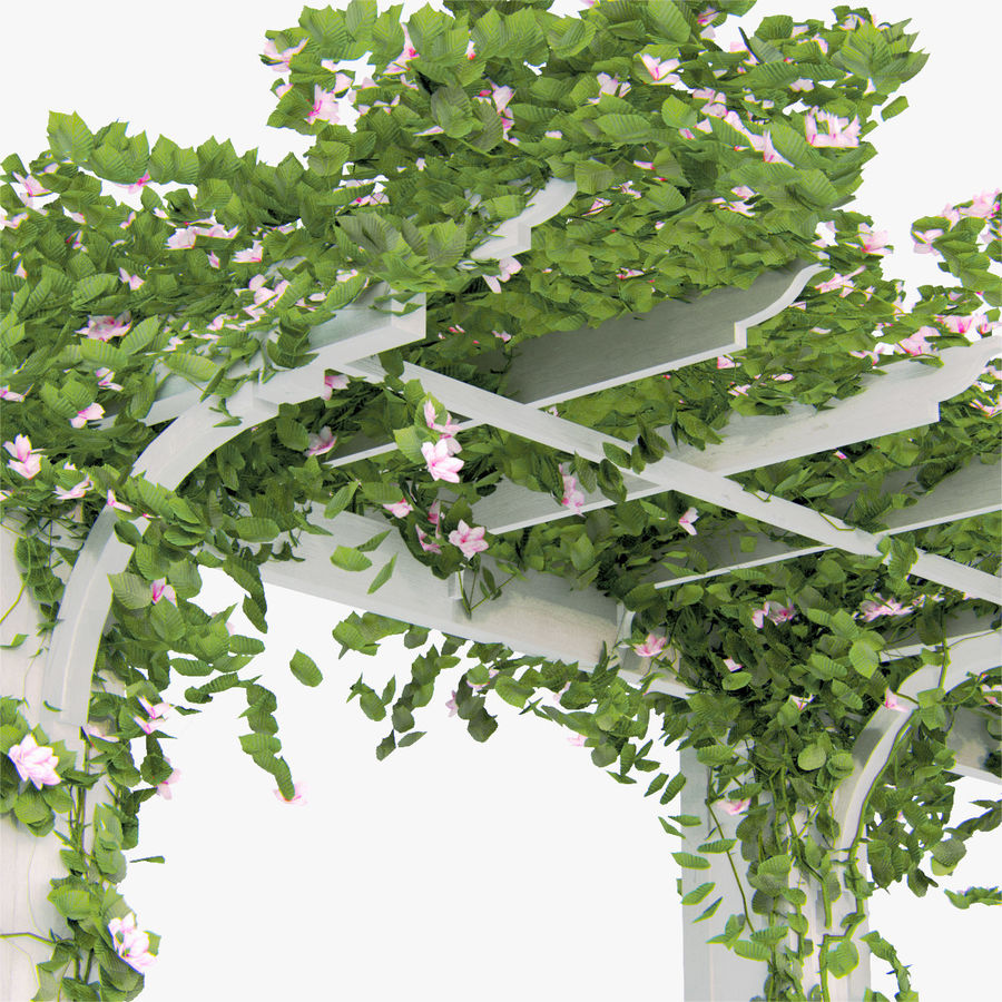 Set climbing roses bougainvillea Of 4 Pergolas With Flowers Ivy royalty-free 3d model - Preview no. 5