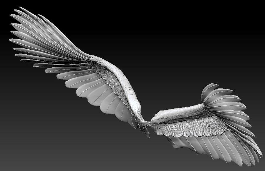 vingar royalty-free 3d model - Preview no. 1